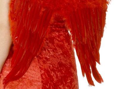 Aripi rosii de inger